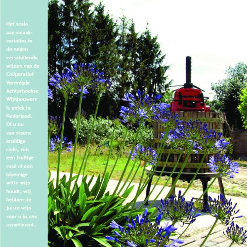 Brochure_Wijnboeren-16